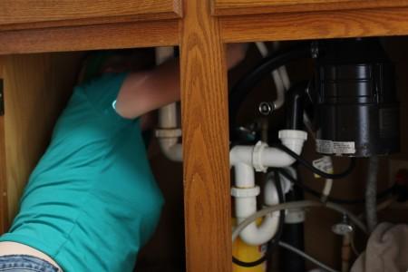 Diana-under-sink