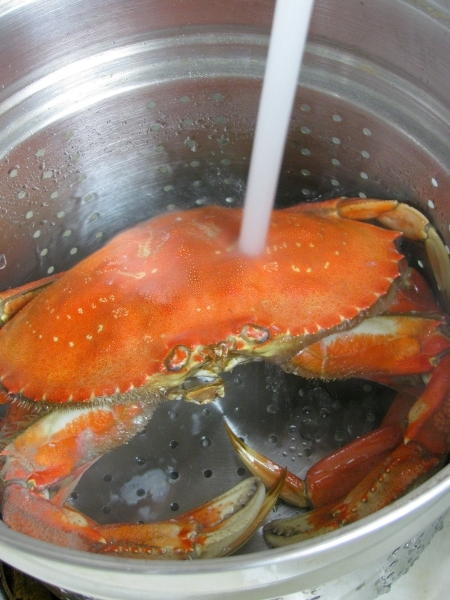 Rinse your crab with cold water
