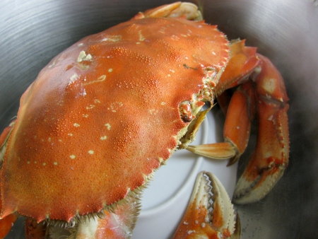 Steam your crab 7-8 minutes for every pound.