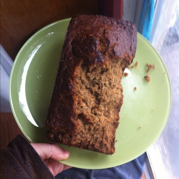 dog-ate-banana-bread