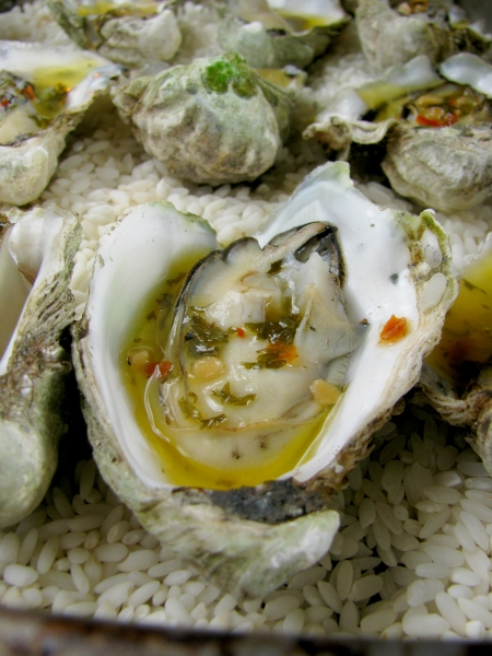 grilled kumamoto oysters