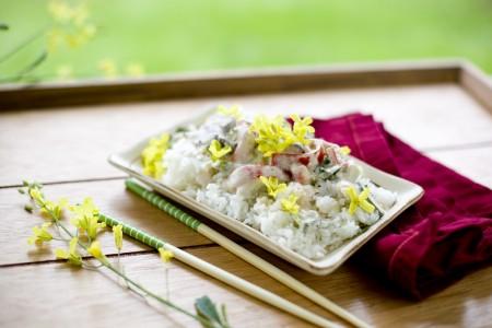 kale-flower-curry-recipe
