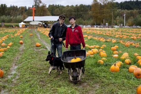 phurba-eric-fred-pumpkin-field