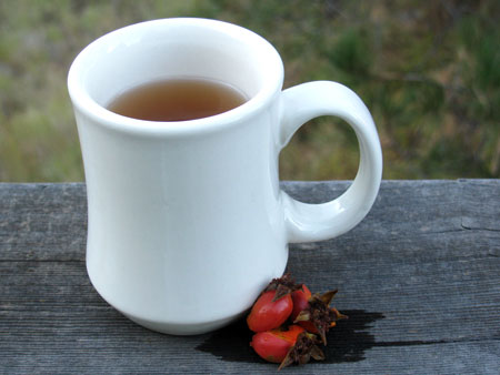 Foraging: Rose Hip Recipe for Tea
