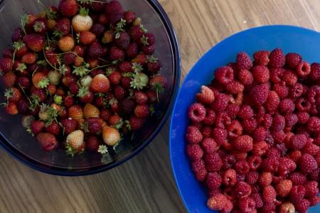 strawberries-raspberries