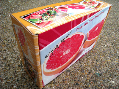 grapefruit-gift-box
