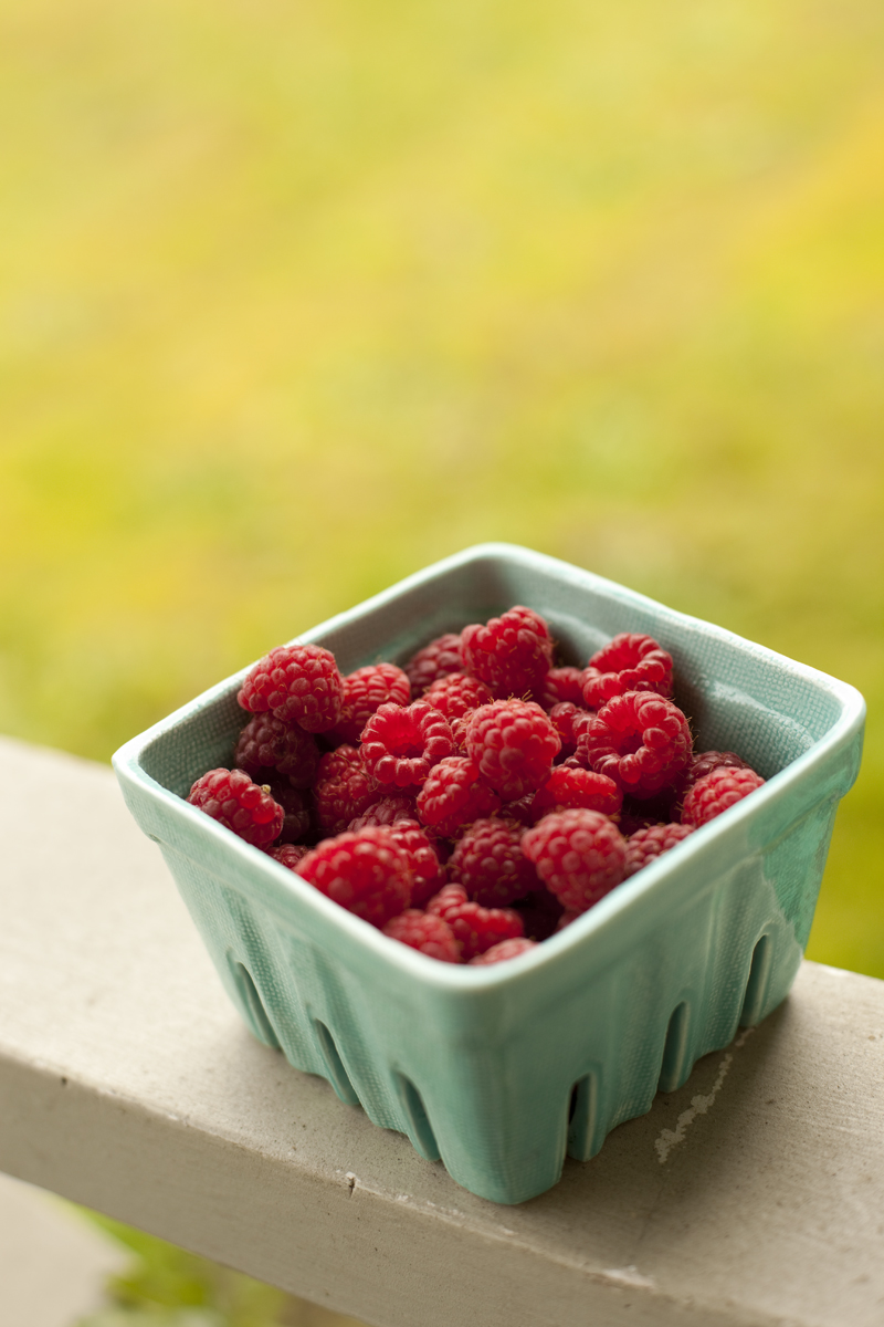 fresh-picked-raspberries