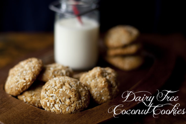 double-coconut-cookies-recipe-text