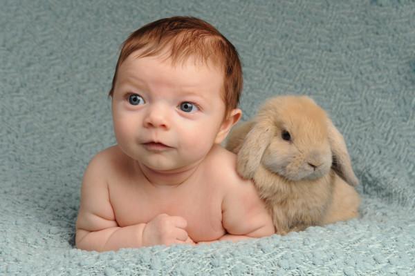 Corban-Bunny-Blanket