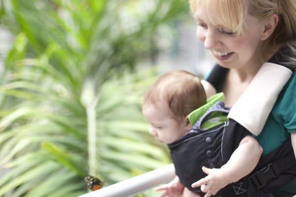 corban-butterfly3