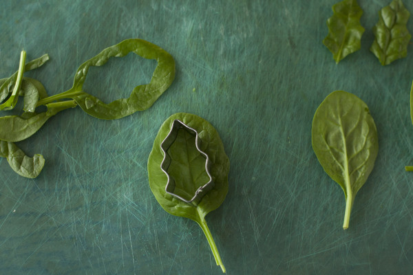 how-to-make-edible-christmas-wreath-snack-leaves