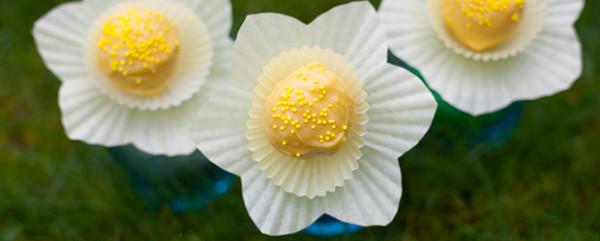Daffodil Cake Pop