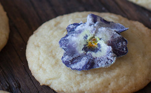 Candied violets garnish tutorial - EatingRichly.com