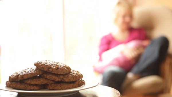 The best lactation cookies for breastfeeding moms - EatingRichly.com
