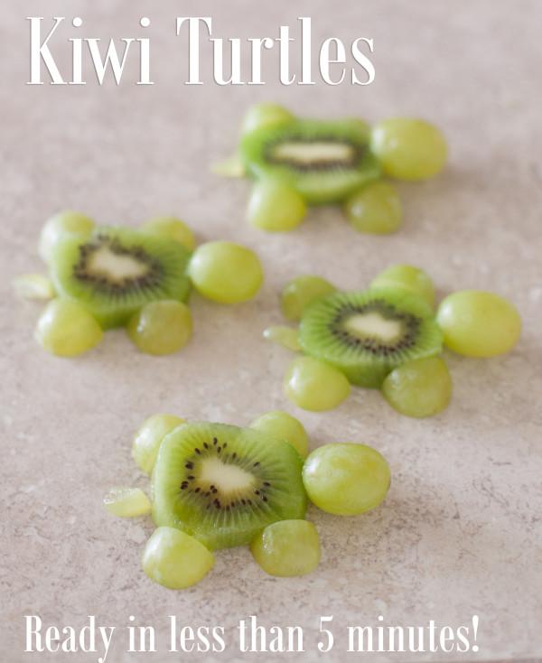 Cute Kiwi Turtles Kid Snack
