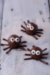 Holiday edible art projects for kids: chocolate protein ball spiders from EatingRichly.com