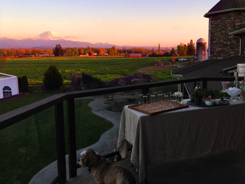 At Invigorate Retreat we had gorgeous sunset views of Mt. Rainier during our cocktail party. Check out all the details of our awesome, all expense paid blogger work retreat! #InvigorateRetreat