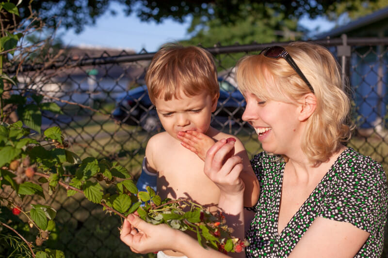 If you have the room, consider some berry plants. Your kids will love picking their dessert each night after dinner. Get more tips for growing a kids vegetable garden at EatingRichly.com
