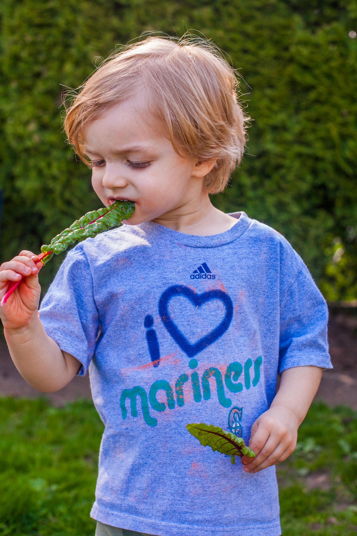 Tips for Planting a Kids Vegetable Garden