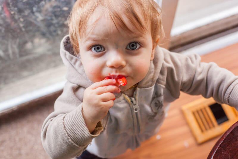 The best finger foods for baby are most likely already in your fridge or pantry! Here's our top baby finger food recommendations plus gear and safety tips. From EatingRichly.com