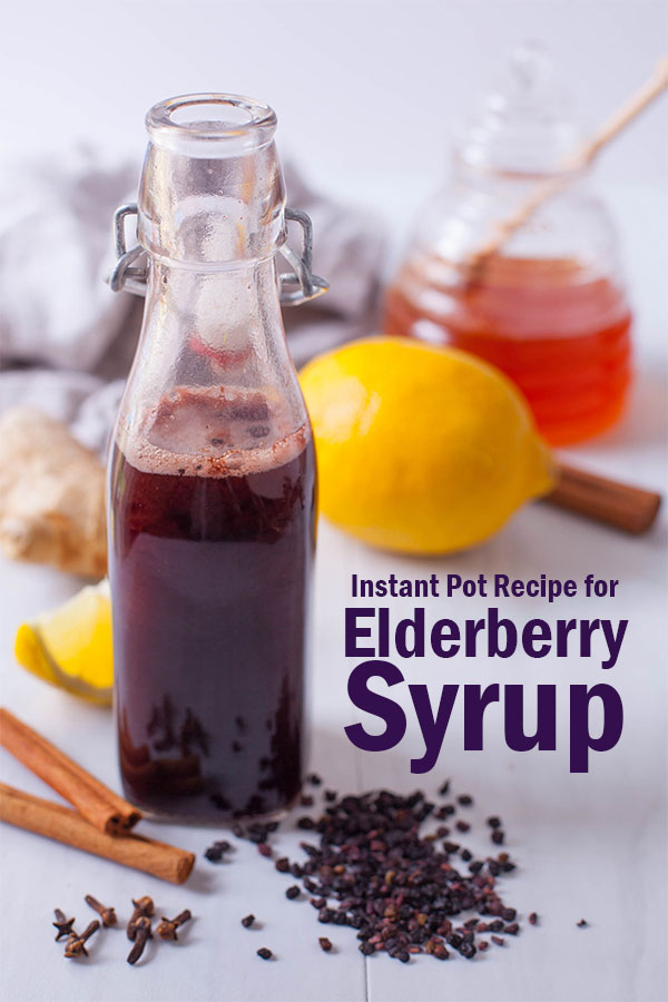 Elderberry syrup and ingredients
