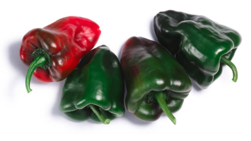 Poblano Peppers for Chile Relleno