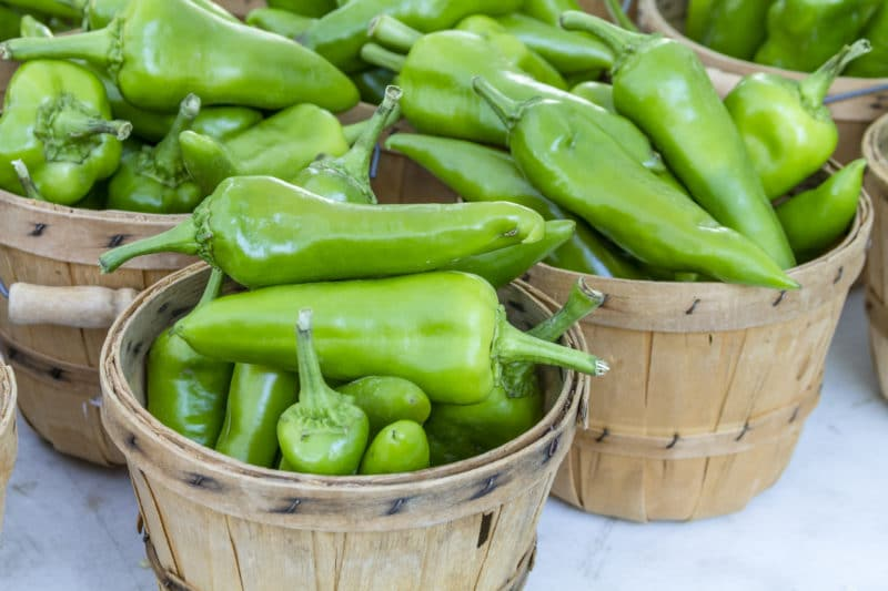 Anaheim peppers in baskets at farmer's market in Zihuantanejo