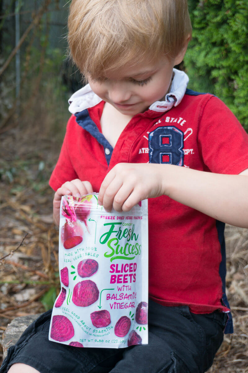 Child eating freeze dried beet chips camping