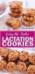 No Bake Lactation Cookies Recipe