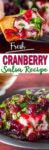 Cranberry Salsa Appetizer