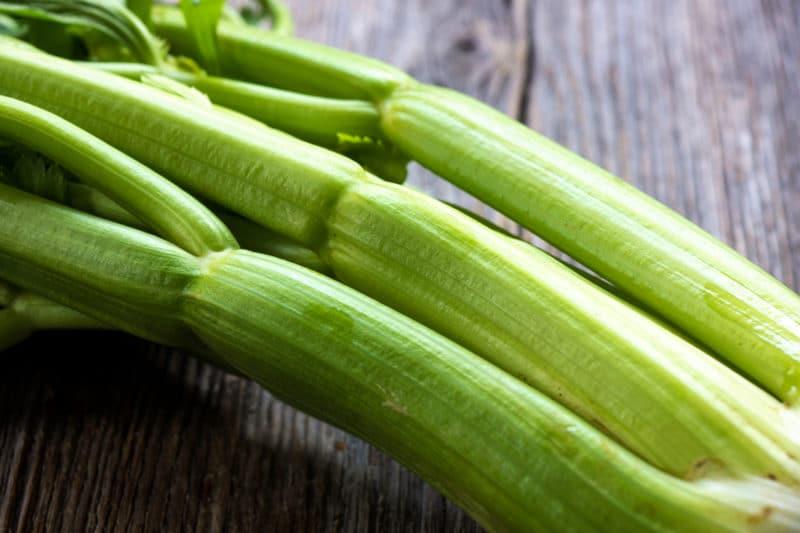 celery closeup