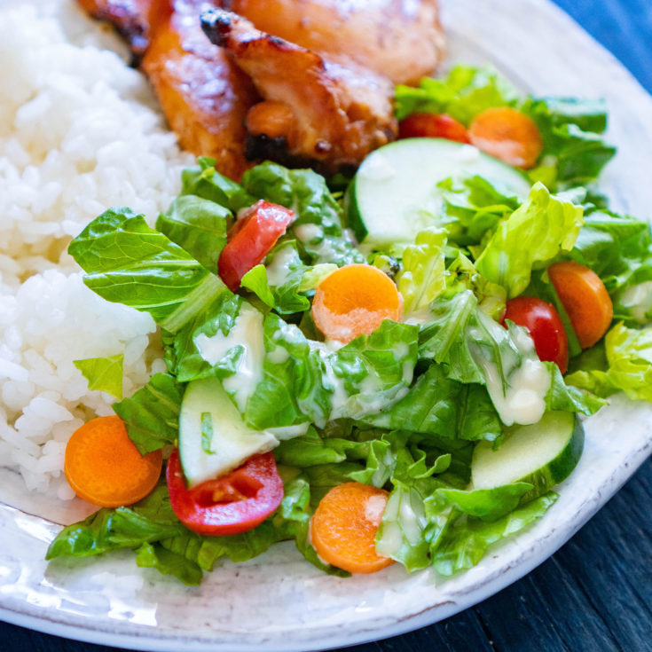 teriyaki salad dressing drizzled on salad of romaine, tomatoes, carrots, and cucumber