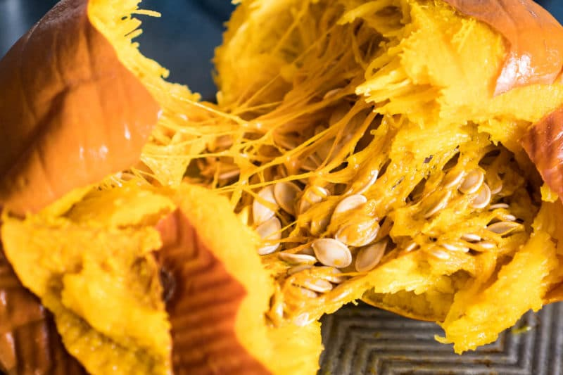 Roasted pumpkin pulled apart to show seeds and guts